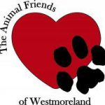 The Animal Friends Westmoreland Shelter Gives Animals a Second Chance
