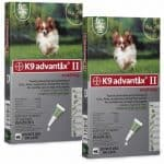 K9 Advantix II and Diatomaceous Earth Help Combat Fleas