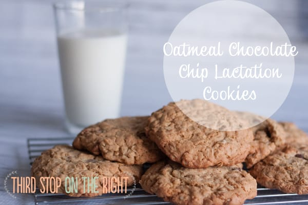 Increase Your Milk Supply — Homemade Oatmeal Chocolate Chip Lactation Cookies!