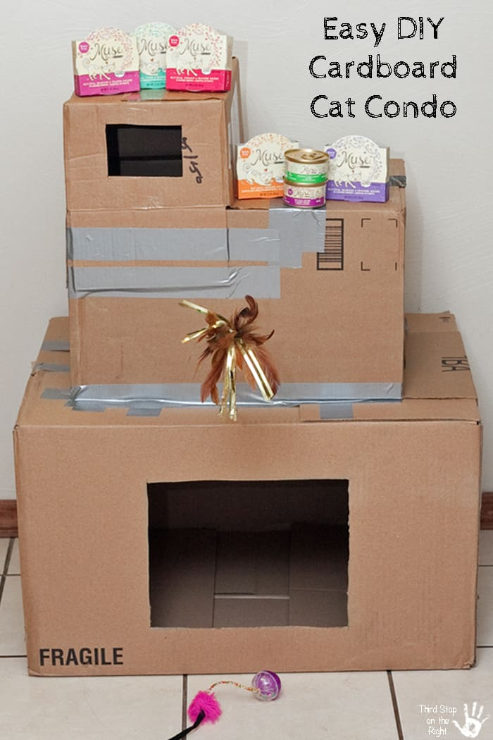 treat feline family with purina muse and a diy cat condo