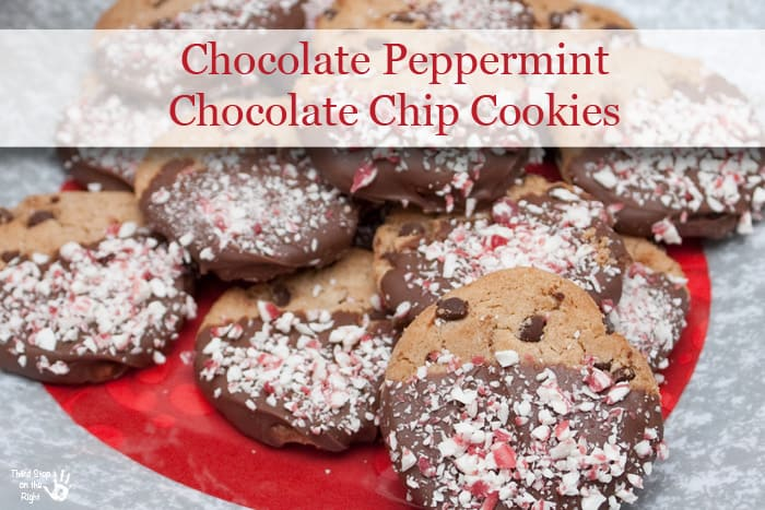 Chocolate_Chip_Dipped_Cookies
