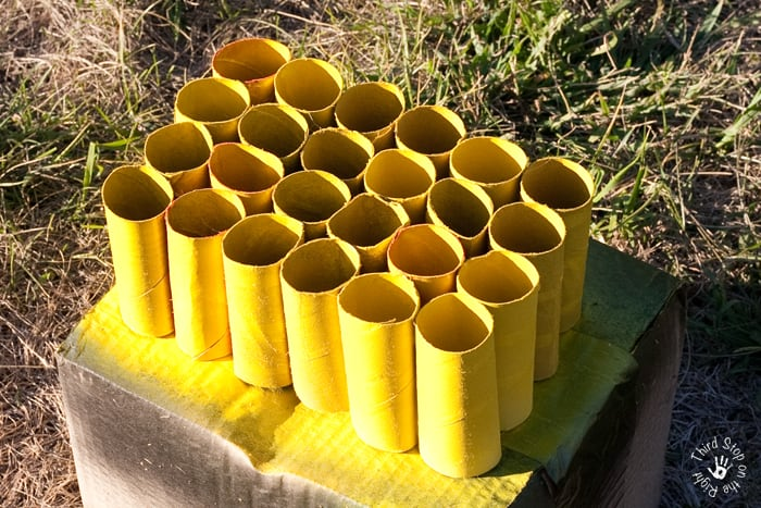 Spray Painted Toilet Paper Rolls