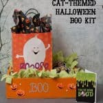 Creating a Cat-Friendly Halloween Boo Kit