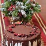 Make The Holidays Special With Baskin-Robbins' Ice Cream Treats!
