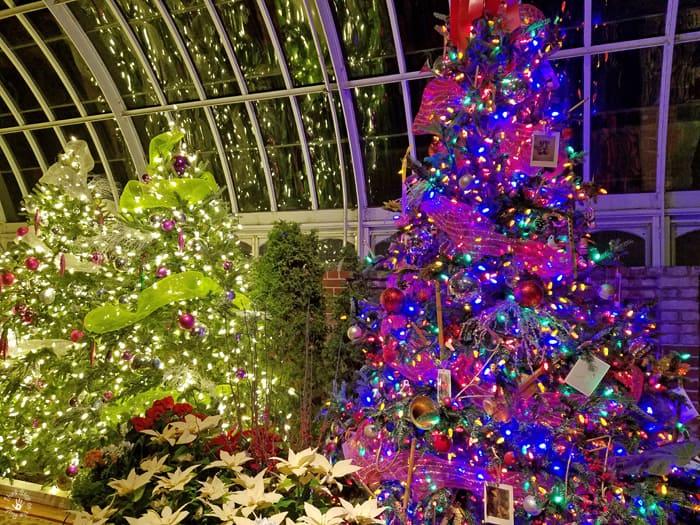decoratedchristmastrees