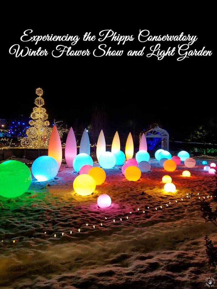 Experiencing the Phipps Conservatory Winter Flower Show and Light Garden