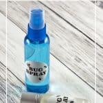 Keep the Bugs Away with DIY Bug Spray