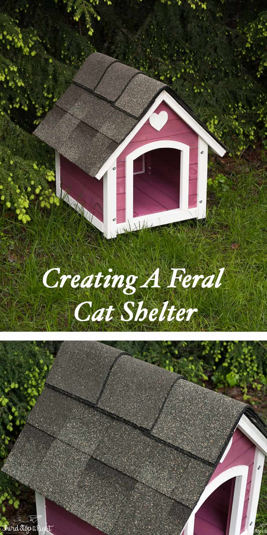 Creating a Feral Cat Shelter. Complete directions on how to build and shingle a dog house or a shelter for feral cats.