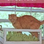 Making a Window Sill Cat Perch