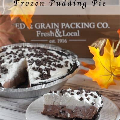Chocolate Chocolate Chip Frozen Pudding Pie