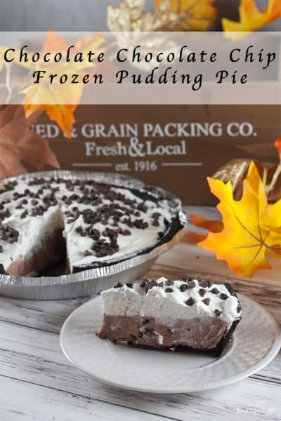 Chocolate Chocolate Chip Frozen Pudding Pie