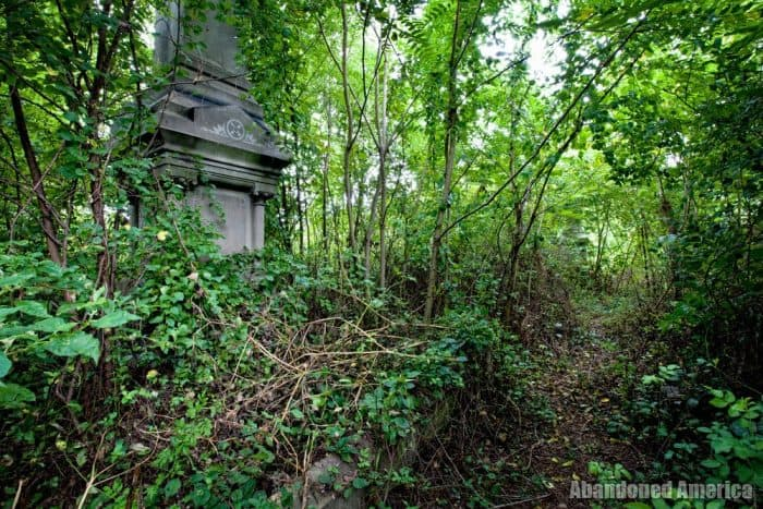 Abandoned Mt Moriah Cemetery