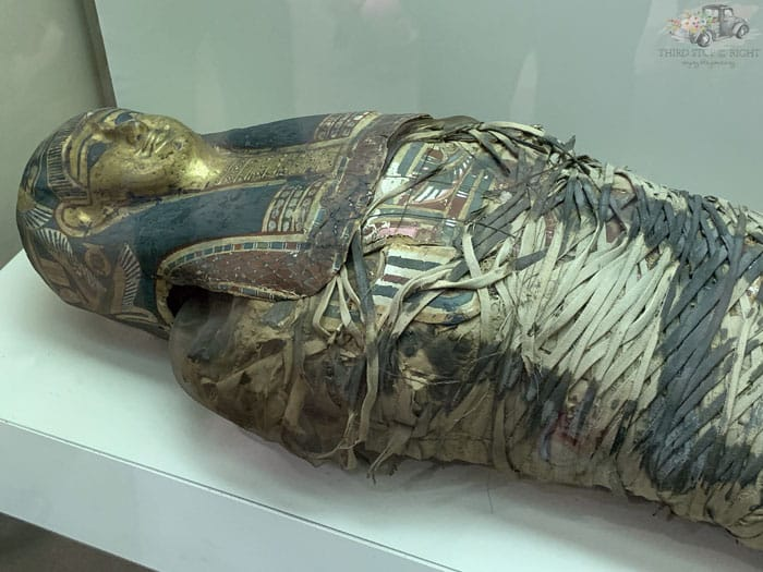 Adult Mummy at Carnegie Museum