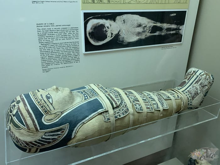 Child Mummy at the Ancient Egypt Exhibit
