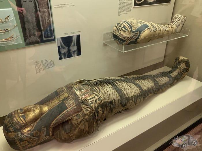 Carnegie Museum Mummies