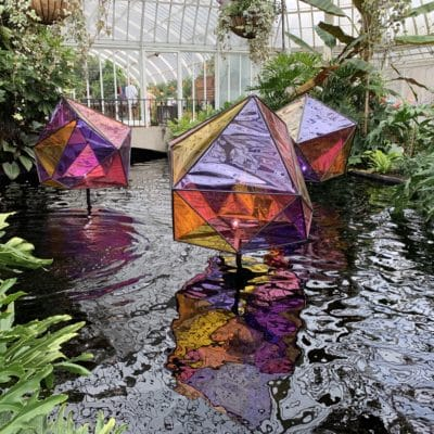 Gardens of the Rainbow at the Phipps Spring Flower Show