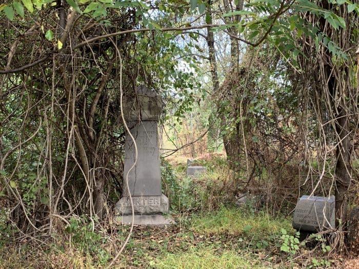 Overgrown Mount Moriah Cemetery