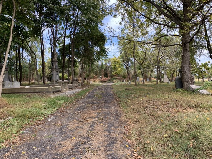 Uncleared sections of Mount Moriah Cemetery