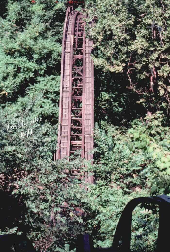 Comet Roller Coaster