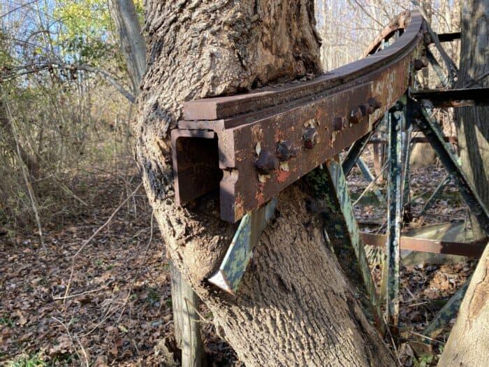 Tumble Bug Track and Tree